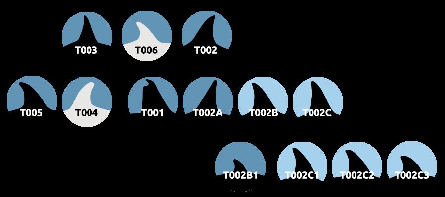 T2 stamboom